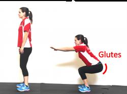 squat glutes