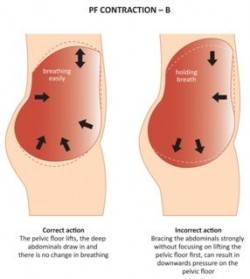 pf-contraction