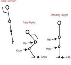 What is Plyometric Training? - Fitness Enhancement Personal