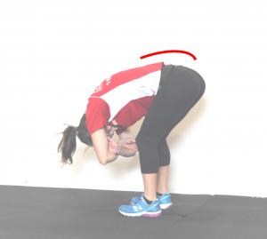 lower back stretch forward fold